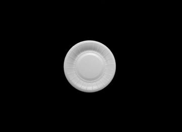 SPA0119